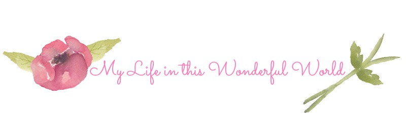 Life in this Wonderful World -